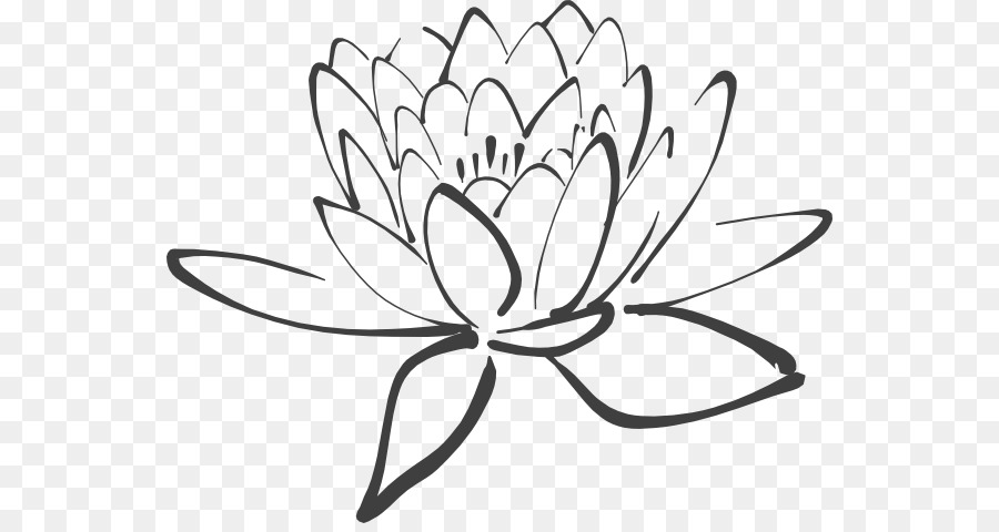 Nelumbo Nucifera White Black Clip Art Lotus Outline Png Download