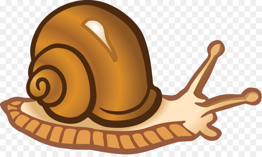 snail clip art snails png download 4000 2362 free transparent rh kisspng com clip art sailing ship logo clip art sailboat free