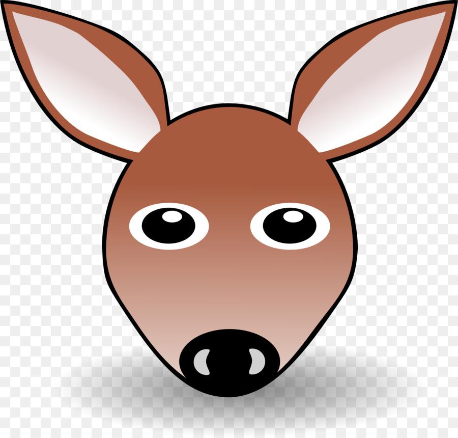 Kangaroo Png Download 1920 1832 Free Transparent Cartoon Png