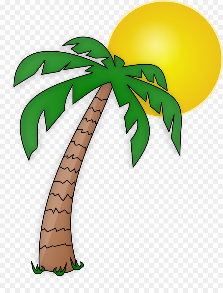 Arecaceae drawing tree cartoon clip art palm tree png download 2000 2618 free transparent - Palmier clipart ...
