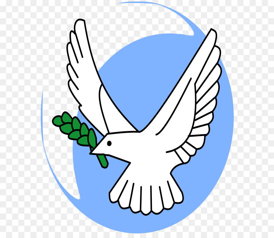 Olive Branch Petition Columbidae Symbol Picture Of Dove With Olive