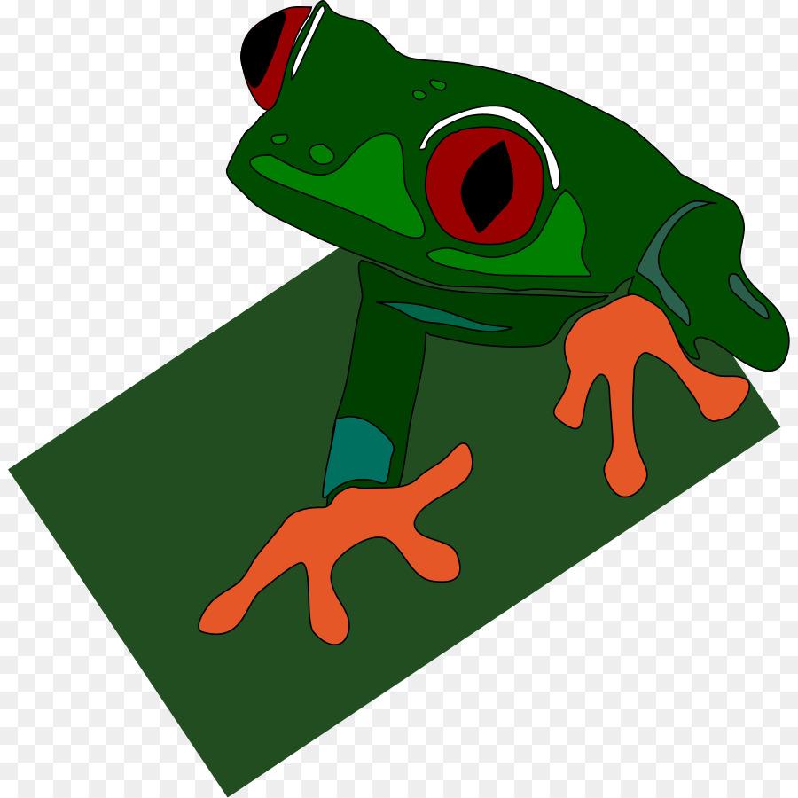 Red-eyed tree frog Poison dart frog Clip art - rana Formatos De ...