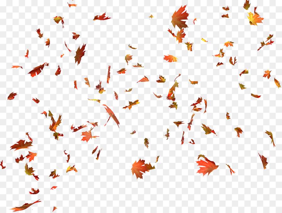 Otoño de color de las hojas en Otoño, el color de la hoja, la hoja ...