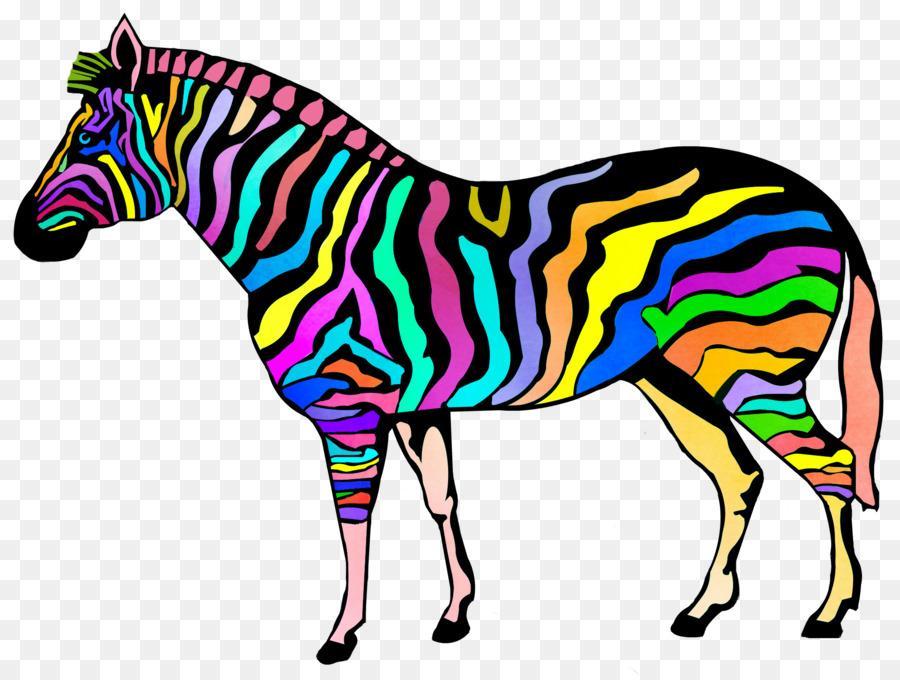 Libro Da Colorare Zebra Stripe Bambino Zebra Scaricare Png