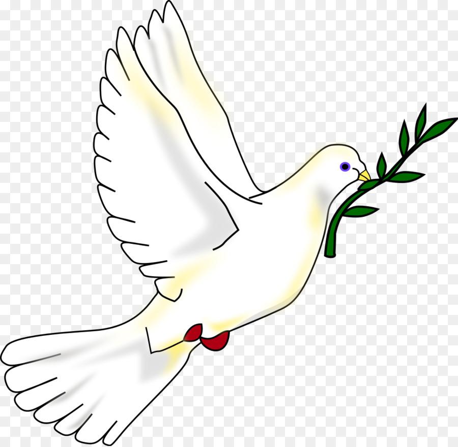 Columbidae Bird Peace Symbols Clip Art Pigeon Png Download 1000