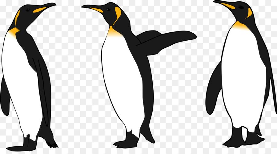 king penguin emperor penguin clip art penguins png download 1499 rh kisspng com clip art penguin images clipart penguins free