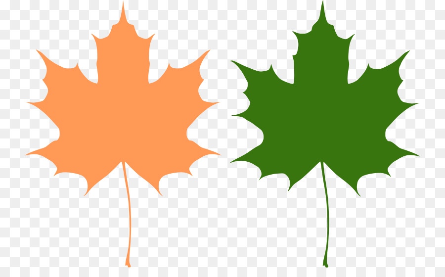 canada reviving canadian democracy maple leaf maple leaf vector rh kisspng com maple leaf vector logo maple leaf vector logo