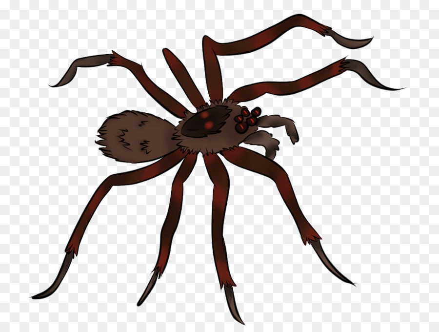 spider animation clip art animated pictures of spiders Flame Border Clip Art fire border clip art free