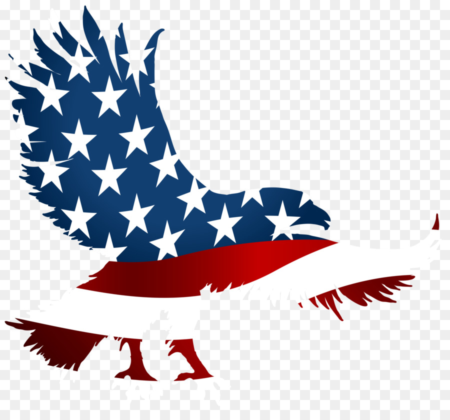 fcca5b612a936 Flag of the United States T-shirt American Eagle Outfitters Clip art - Eagle  Birthday Cliparts png download - 8000 7332 - Free Transparent United States  png ...