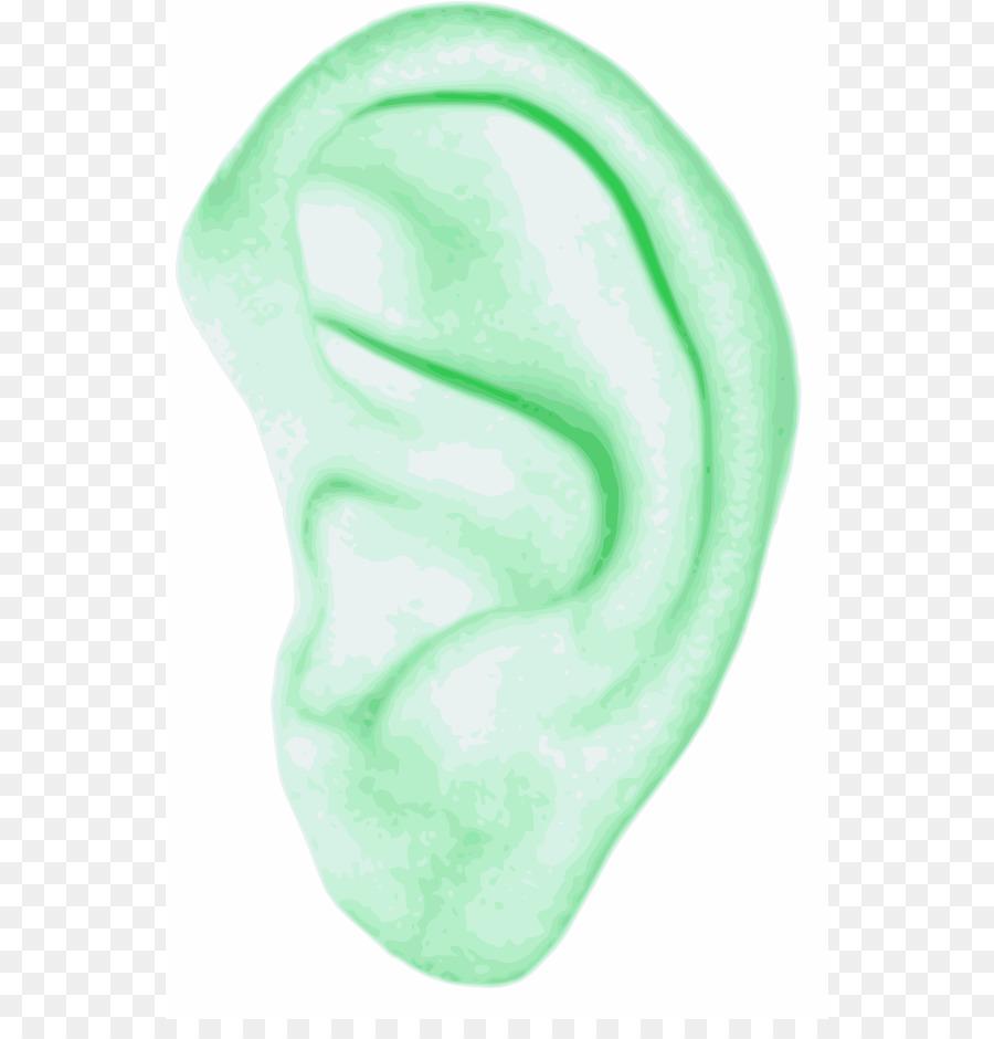 Ear Human Body Clip Art Human Figure Outline Png Download 600