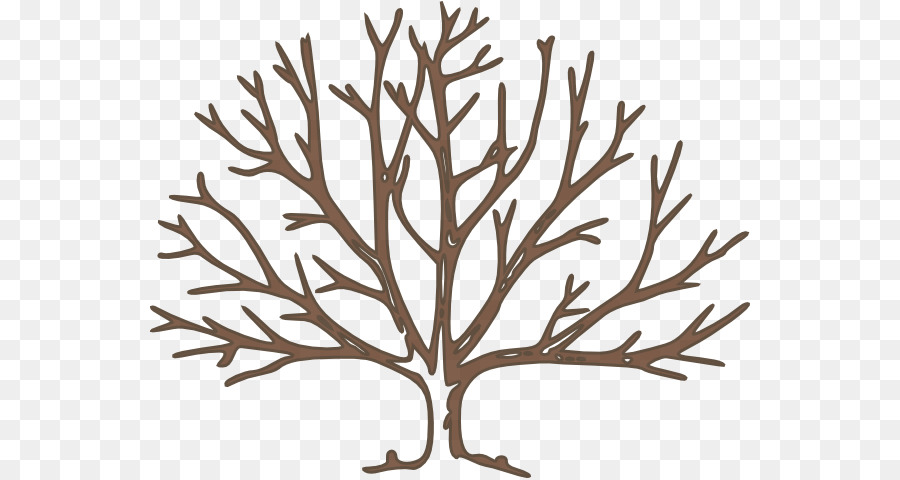 tree clip art bare tree template png download 600 478 free