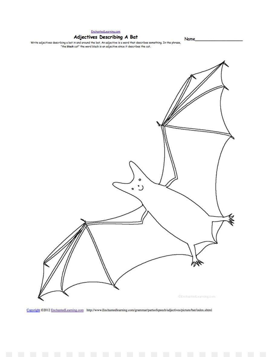 Megabat Drawing Worksheet Anatomy - Drawings Of Fruit Bats png ...