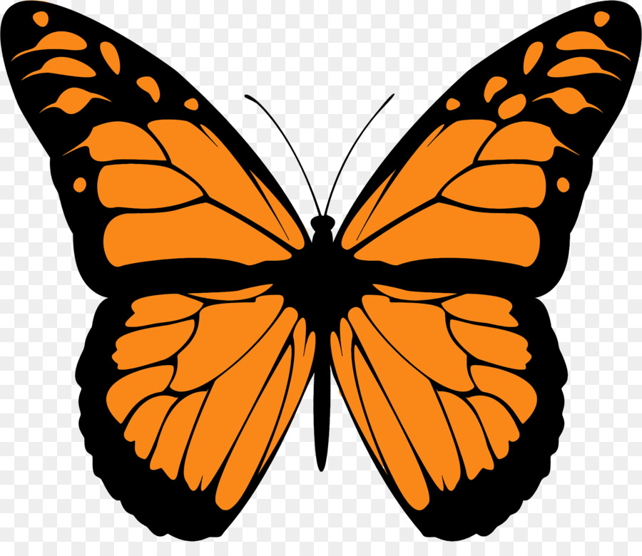 monarch butterfly drawing animal migration clip art butterfly png rh kisspng com monarch butterfly clipart free monarch butterfly clipart transparent background