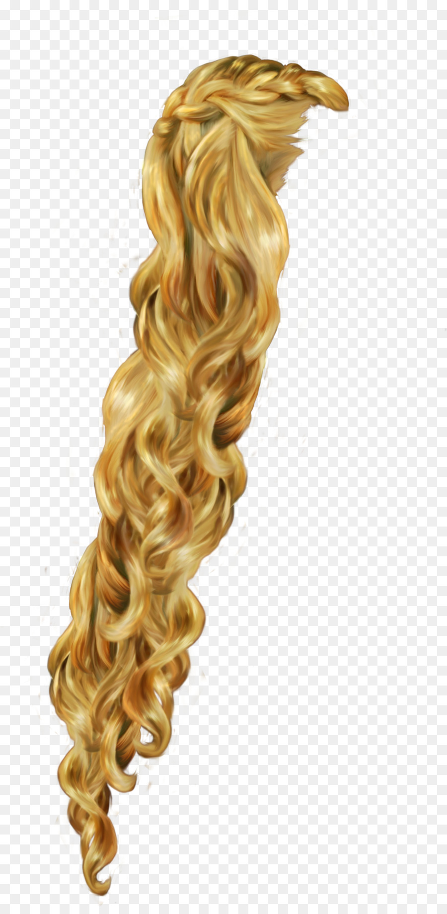 Rapunzel Hairstyle Braid Blond