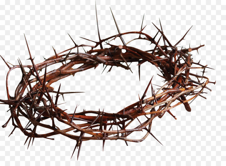 Crown Of Thorns Christian Cross Symbol Thorns Spines And Prickles