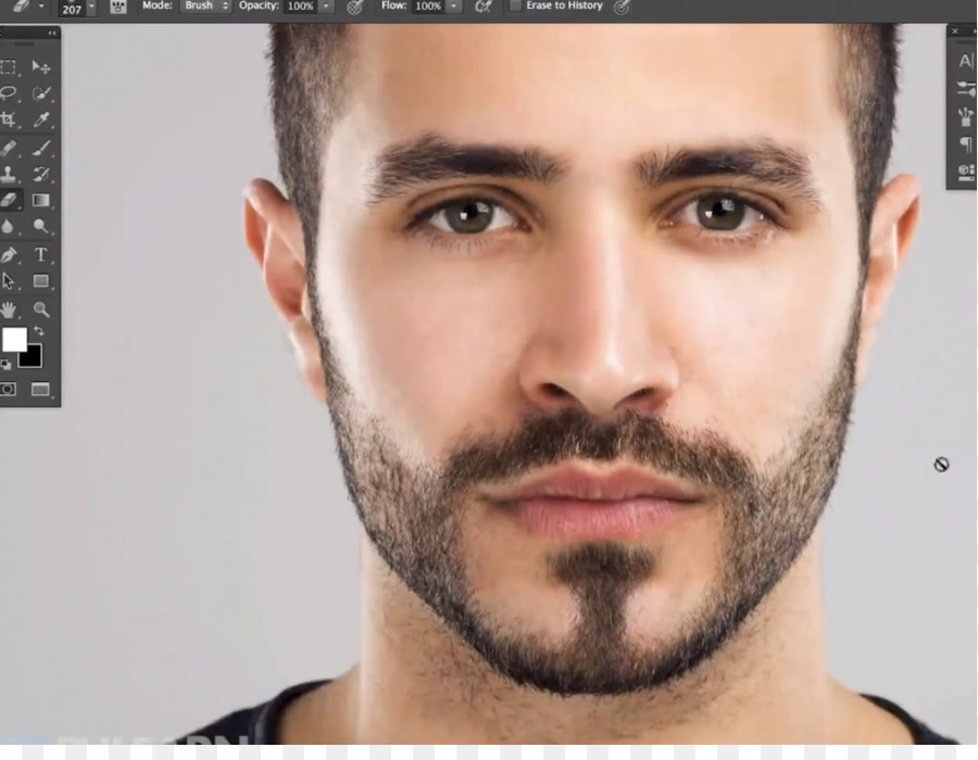Facial hair software