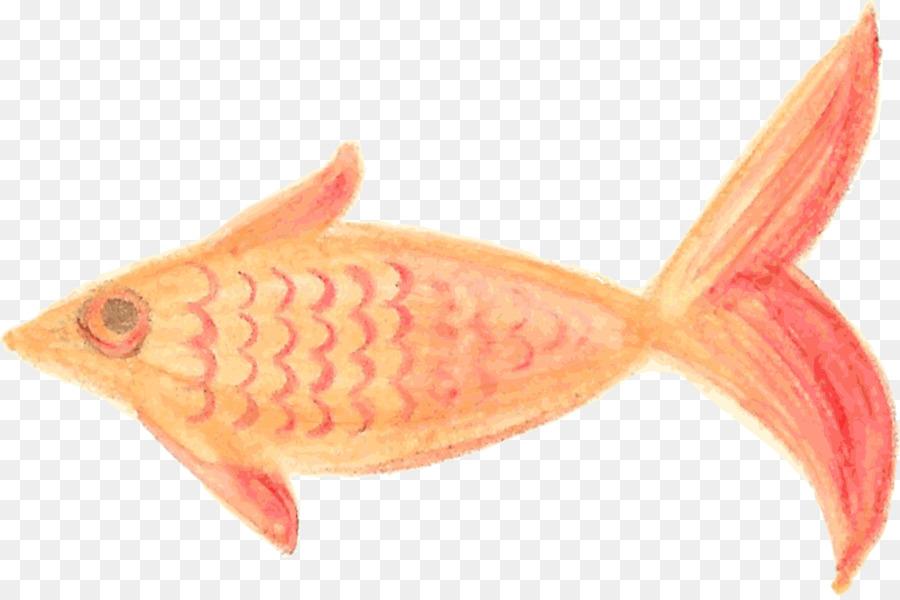 Boyama Balık Resmi