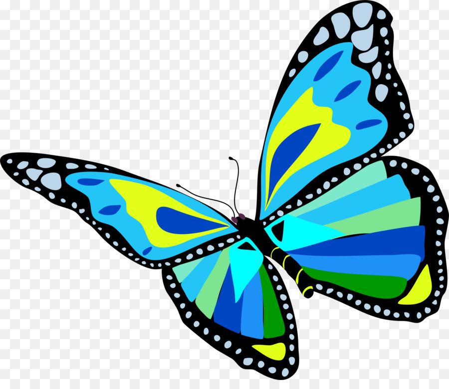 Бабочки картинки нарисованный