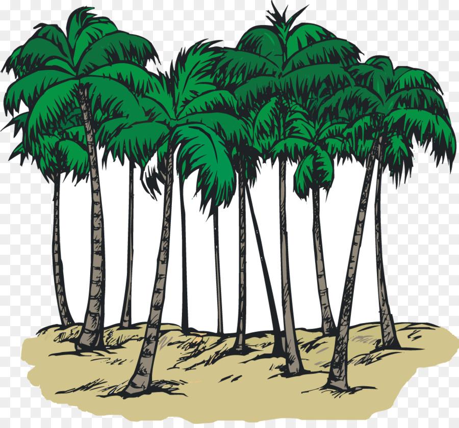 South Carolina Sabal Palm Arecaceae Coloring Book Clip Art