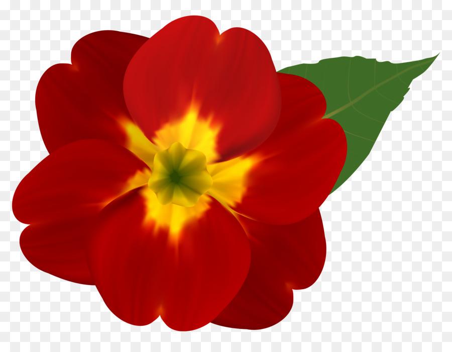 Fleur Rose Rouge Clip Art Fleur Rouge Telechargement Png 6260