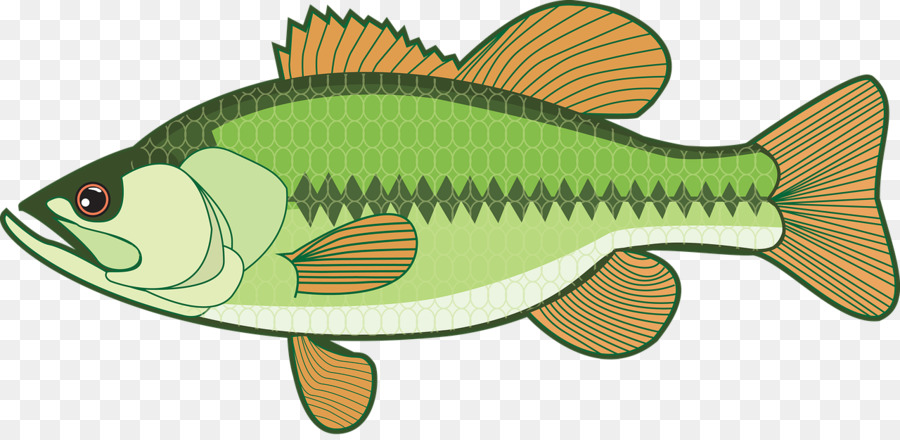 bass clip art fishing png download 1280 621 free transparent rh kisspng com Bass Fish Silhouette Bass Fish Silhouette