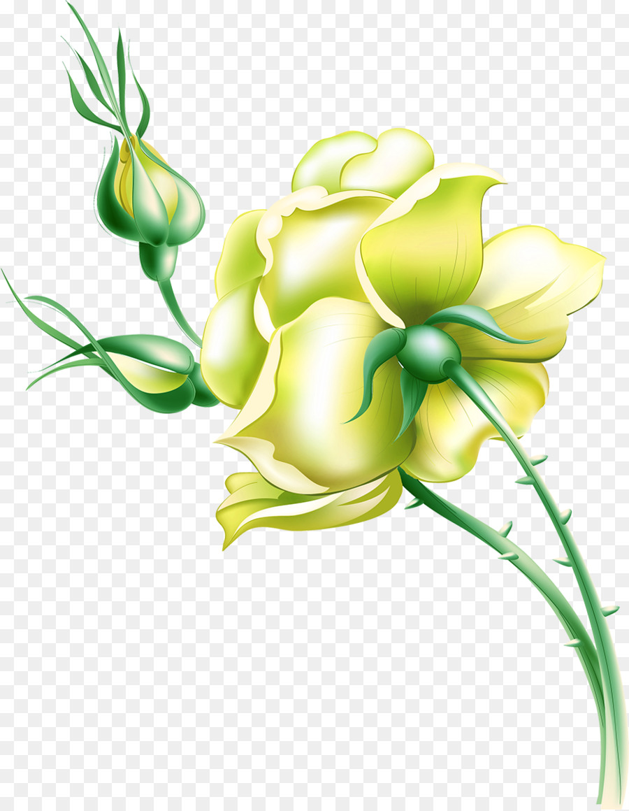 Flower Drawing Yellow Rose Png Download 9331200 Free