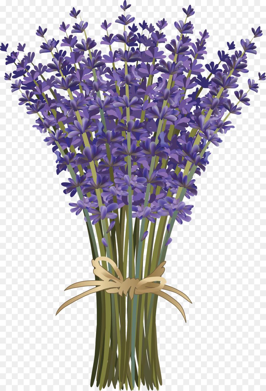 Lavandula dentata French lavender Flower bouquet Botanical ...
