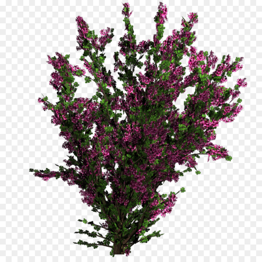 Flower Plant Tree Shrub Texture Mapping Bushes Png