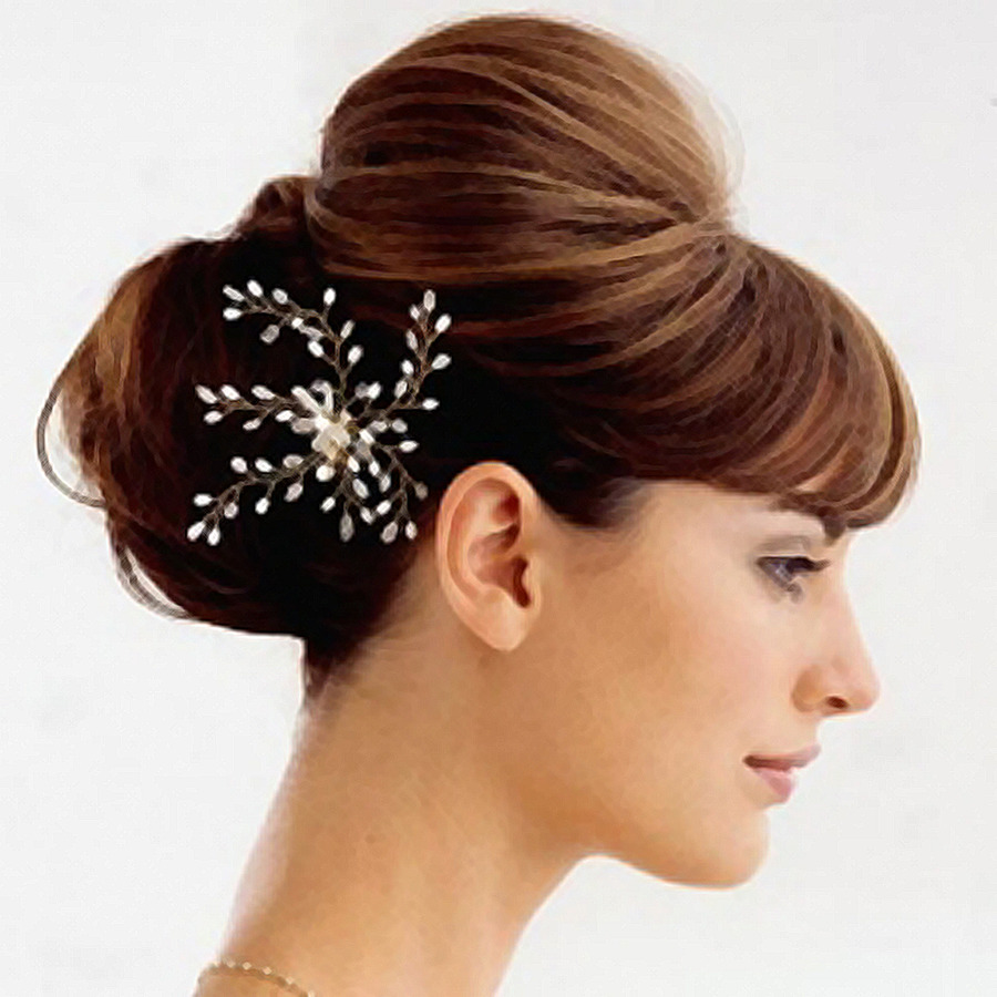 Hairstyle Updo Bun Beauty Parlour Hairstyle Png Download 1024