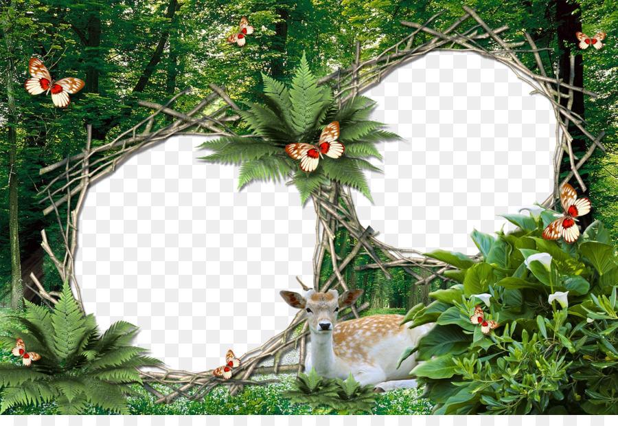 Marcos De Fotografía Con Android - Photoshop Formatos De Archivo De ...