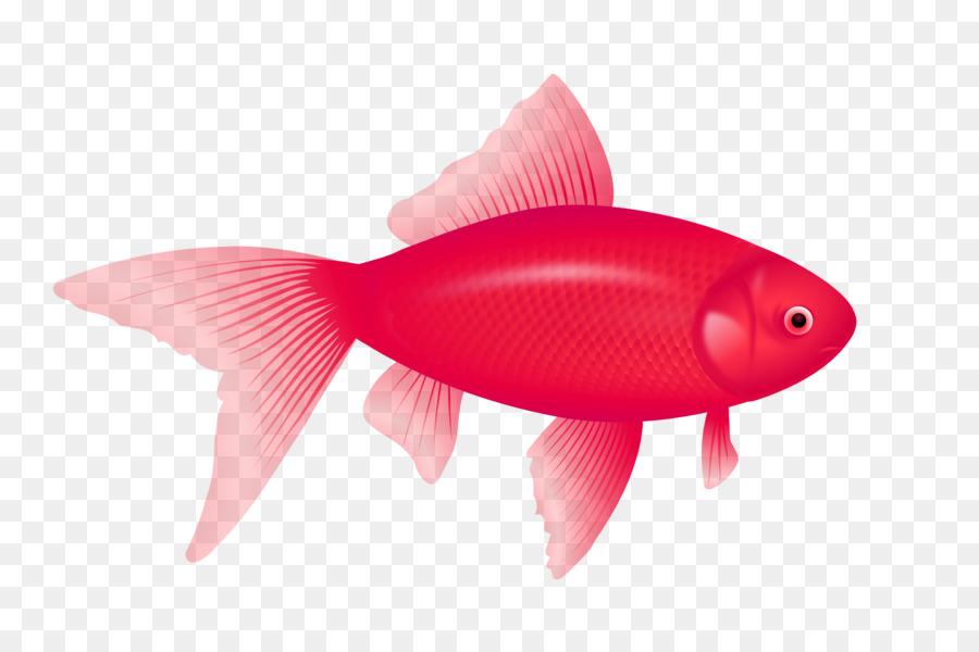 Fish Desktop Wallpaper Clip Art Goldfish