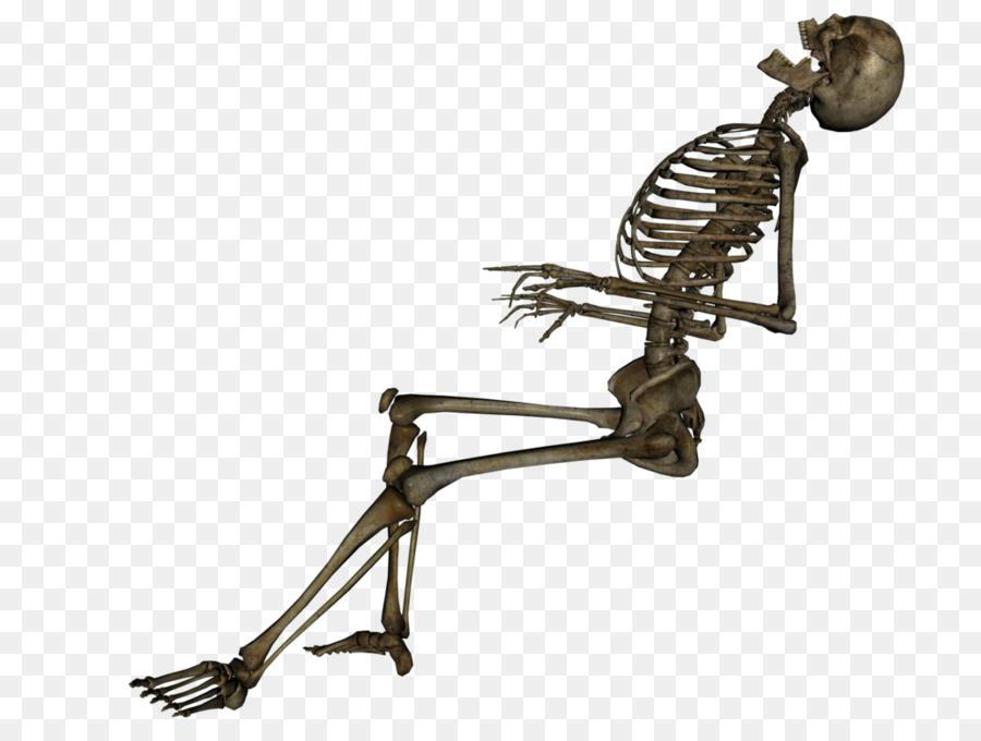 Esqueleto humano Cráneo de la Muerte, La Calavera Catrina ...