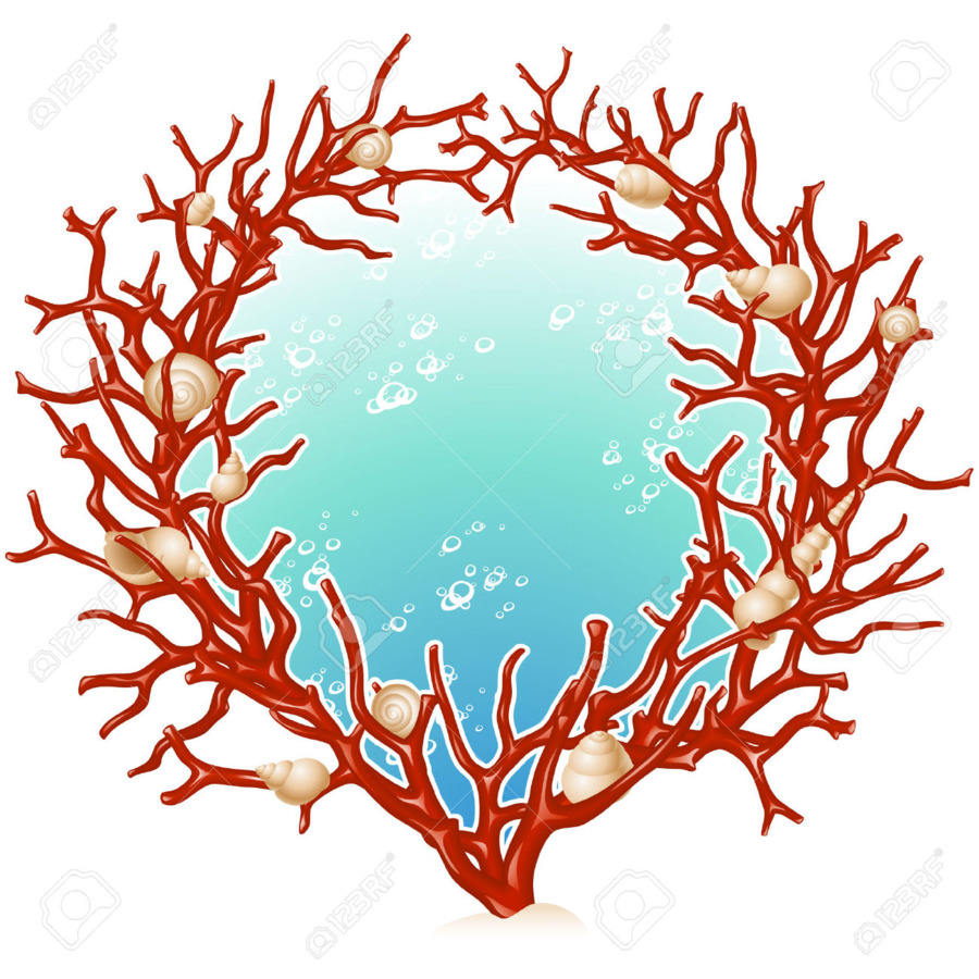Red Coral Picture Frames Clip art - coral png download - 1300*1300 ...