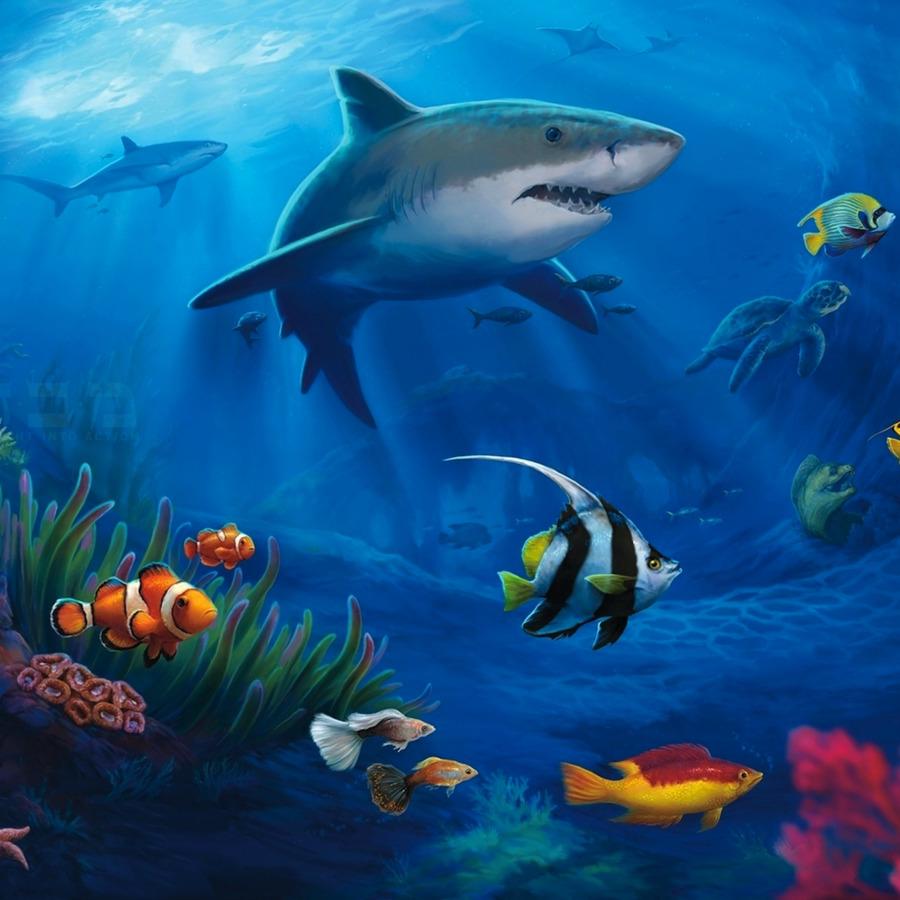 3d Aquarium Live Wallpaper: Marine Aquarium Desktop Wallpaper