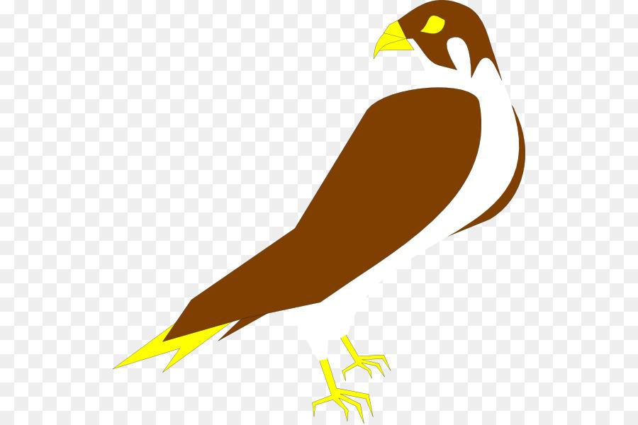 peregrine falcon clip art falcon png download 582 598 free rh kisspng com falcon clip art pictures atlanta falcon logo clipart