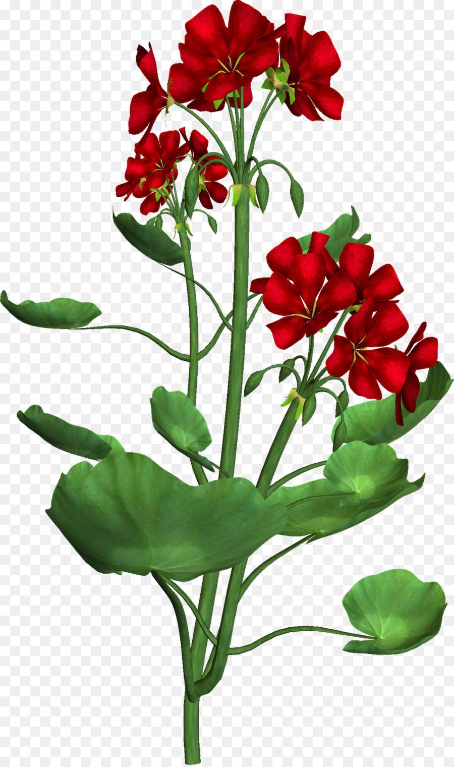 Floral Embroidery Designs Flower Floral Design Clip Art Altar Png