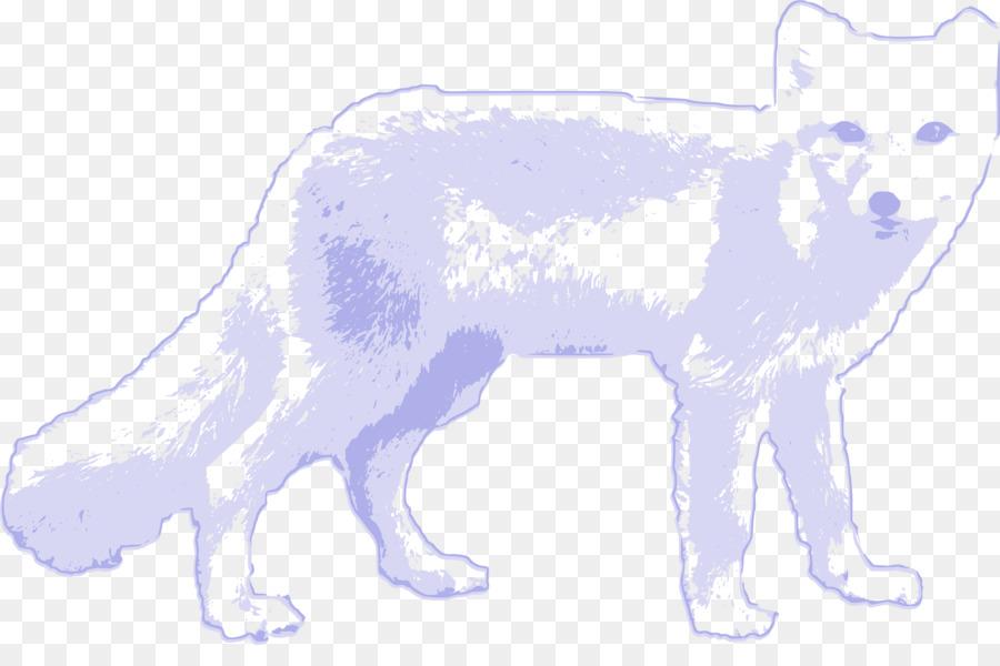 Zorro polar Ártico lobo zorro Rojo Clip art - zorro ártico png ...