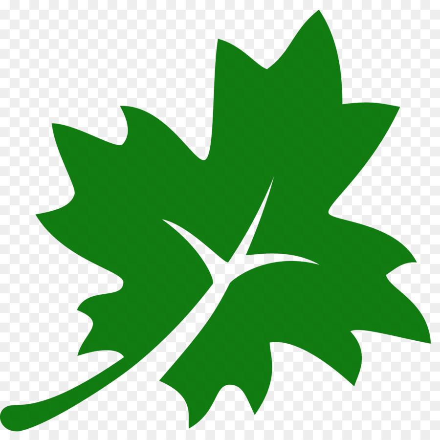 Acer Nigrum Maple Leaf Computer Icons Olive Leaf Png Download