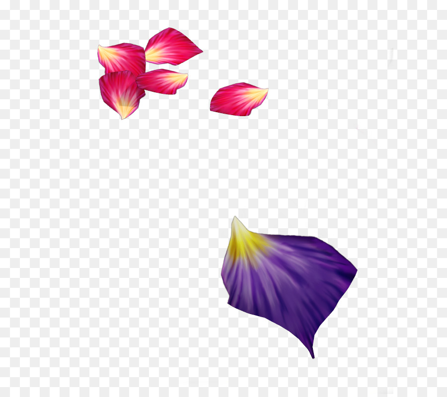 Flower petal purple rose petals png download 684794 free flower petal purple rose petals mightylinksfo