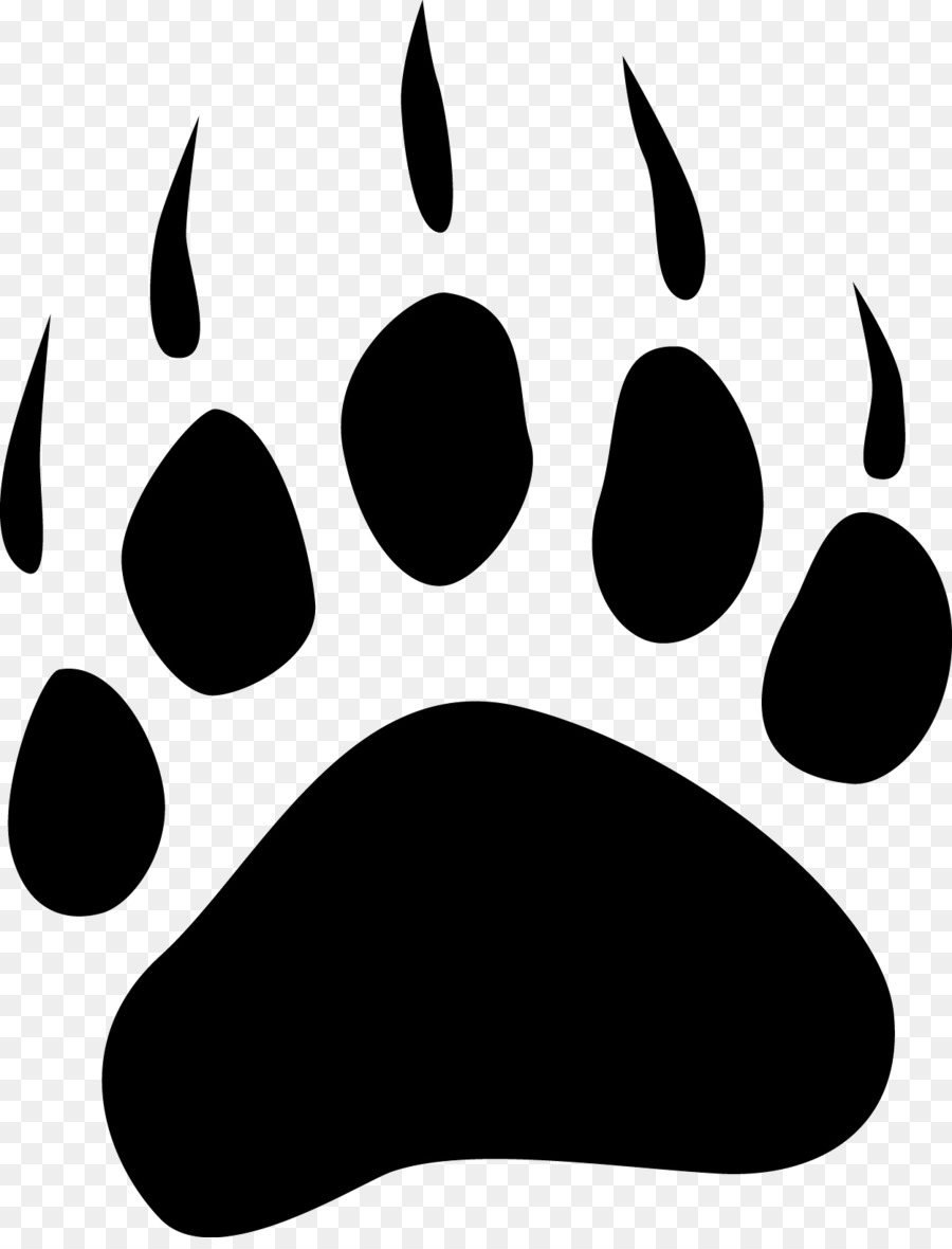 dog american black bear polar bear bear claw claw png download rh kisspng com  bear claw marks clipart
