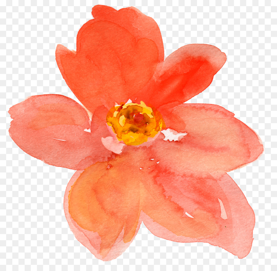 Watercolor painting Flower Drawing Clip art - peach flower png ...