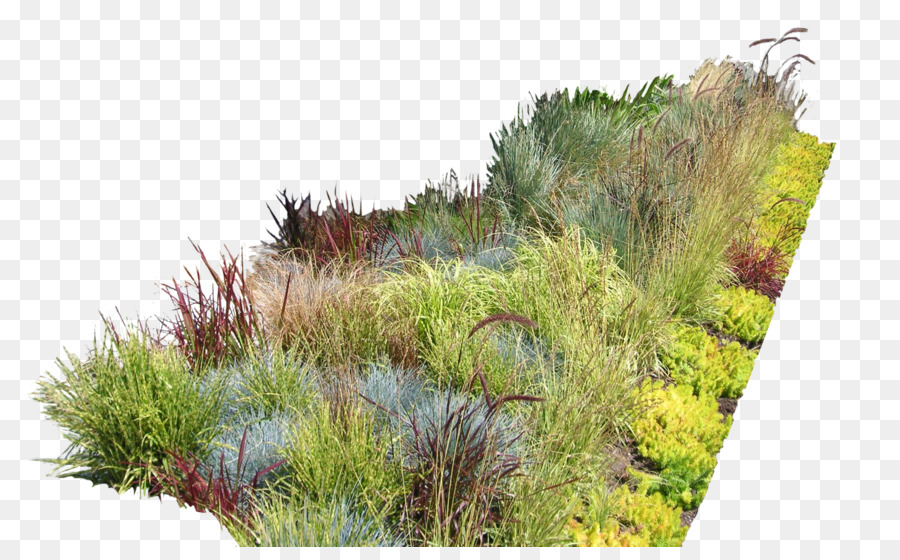 Las Ideas del jardín diseño de jardines Paisajismo diseño del ...