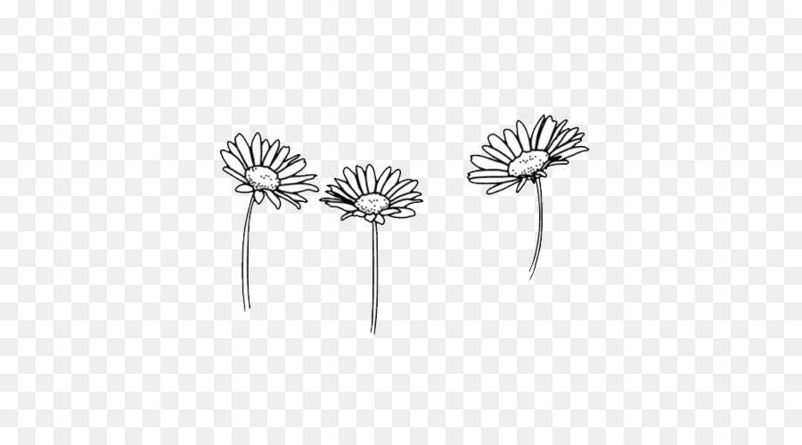 Drawing Flower Black And White Sketch Cute Png Download 500 500