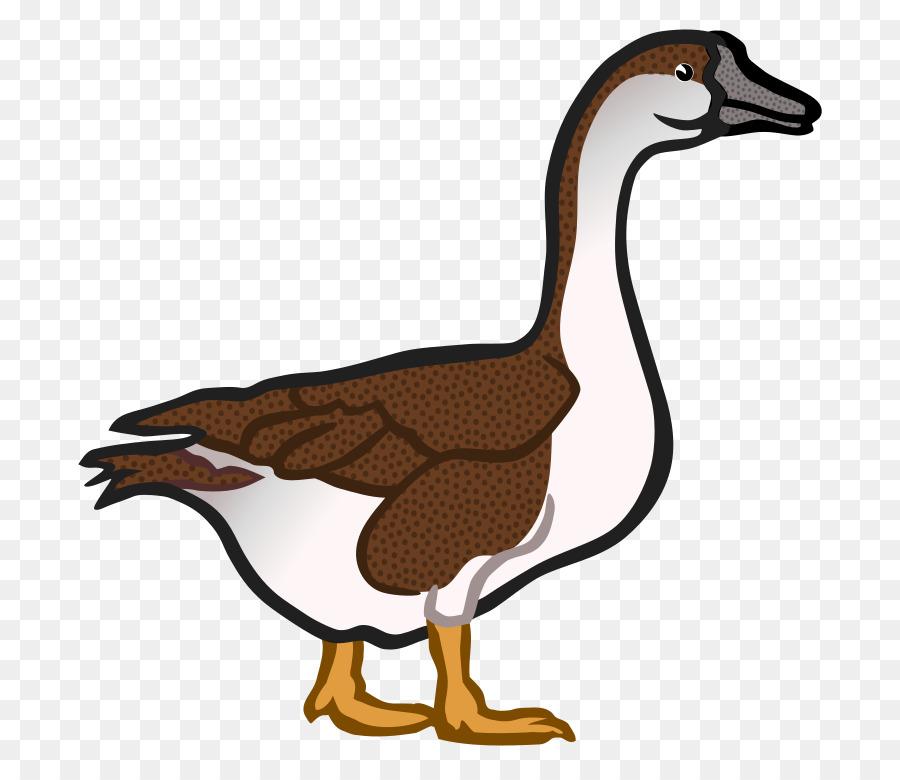 goose duck clip art goose png download 800 775 free rh kisspng com goose clipart images goose clipart free