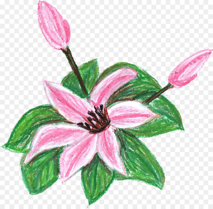 Flor Crayón Clip Art Lápiz Png Dibujo Transparente Png Dibujo