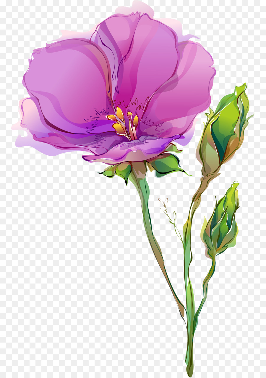 Cut Flowers Tulip Drawing Poppy Spring Flowers Png Download 826