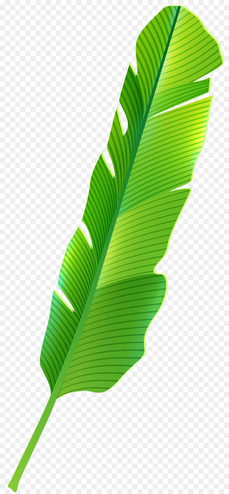 Tropics Leaf Clip Art