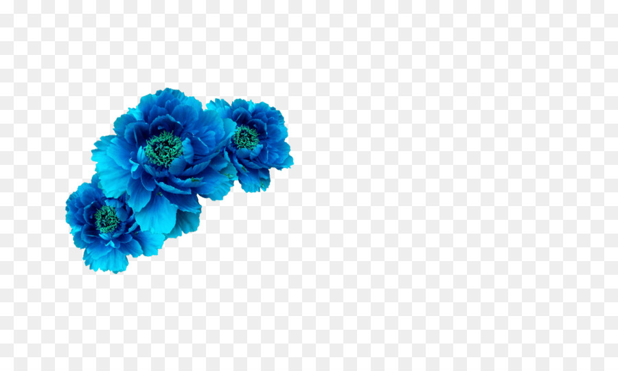 Flower crown blue. Flowers clipart background png