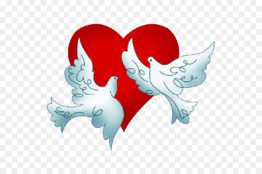 Columbidae Hochzeitstauben Als Symbole Clip Art Wo Png