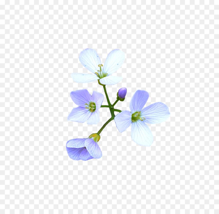 Flower blue deviantart flower crown png download 1024979 free flower blue deviantart flower crown izmirmasajfo